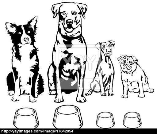 512x437 Four Dogs With Food Bowl Vector