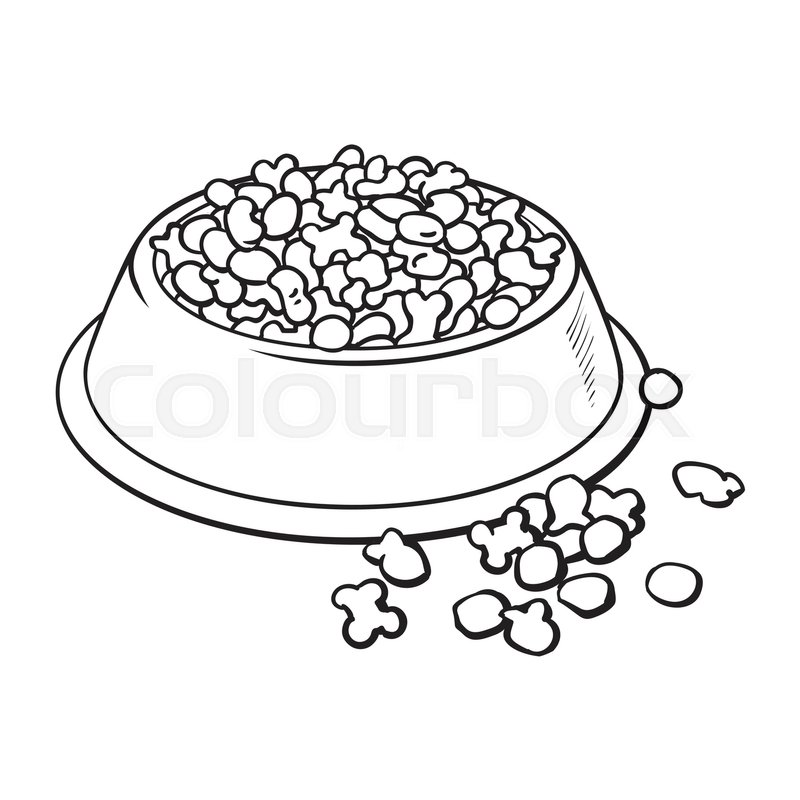 800x800 Blue Shiny Plastic Bowl Filled With Dry Pelleted Food For Pet, Cat