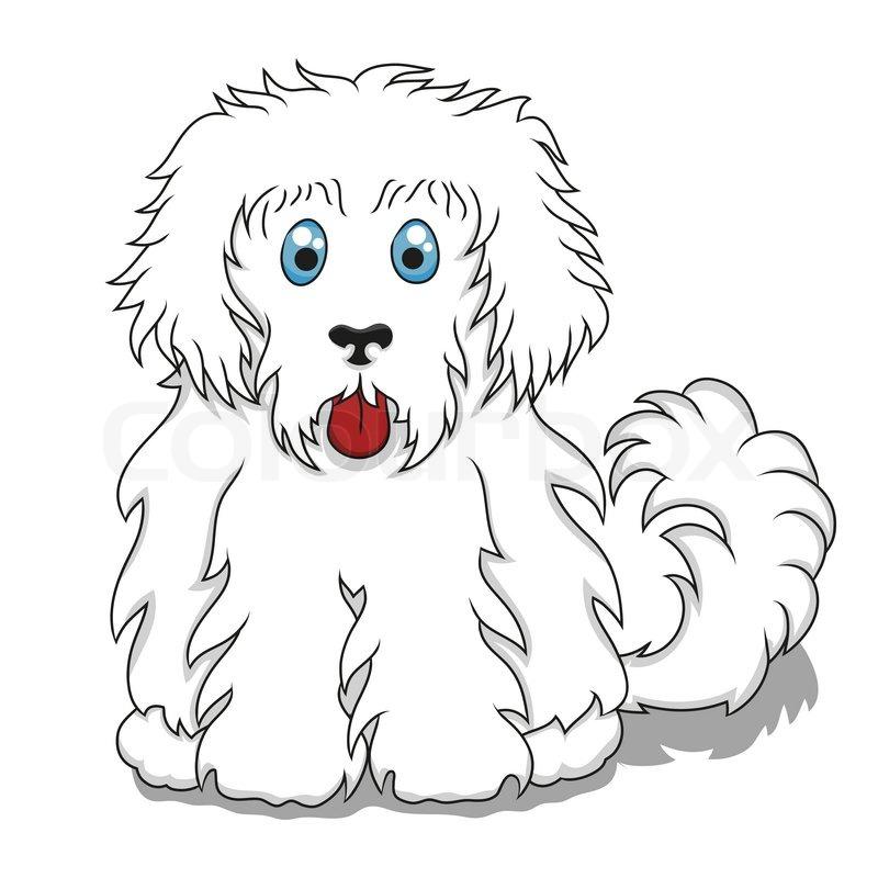 800x800 Cute Fluffy Cartoon Dog. Vector Illustration Of Cute Cartoon Dog