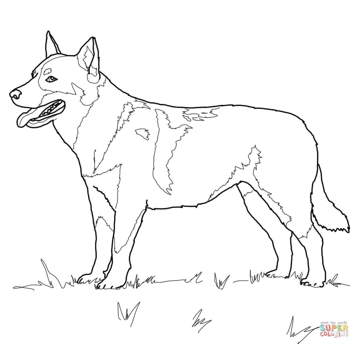 1200x1160 Australian Cattle Dog Coloring Page Free Printable Pages