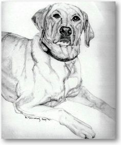 236x284 I Will Draw A Cute Picture Of Your Pet