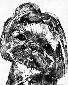 241x300 Shih Tzu Dog Paintings Fine Art America