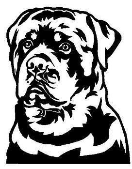 272x349 My Doggies