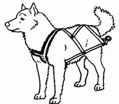 236x207 Make A Dog Collar Or Dog Leash