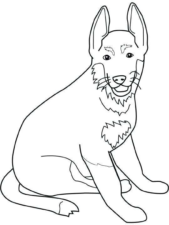 540x720 A Picture Of A Dog To Color Pin Drawn Coloring Page 3 Picture Dog
