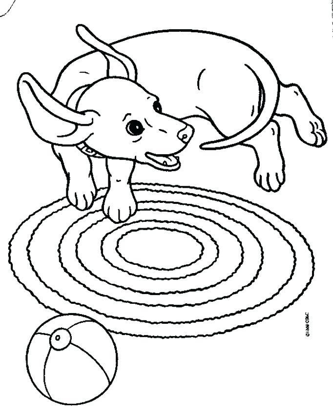 Dog Collar Drawing At Getdrawings Com