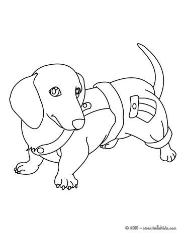 364x470 Dachshund Puppy Coloring Page. Nice Dog Drawing For Kids. More