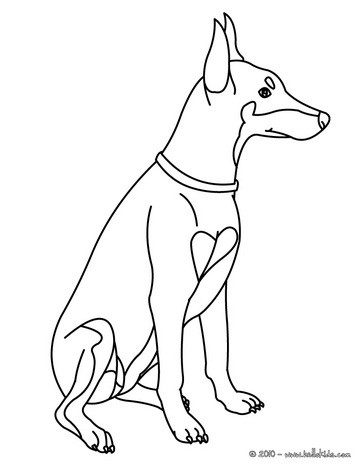 364x470 Doberman Coloring Page. Nice Dog Drawing Kids. Looking