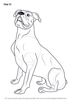 236x333 Gallery For Gt Boxer Dog Head Drawing Sketchy Dog