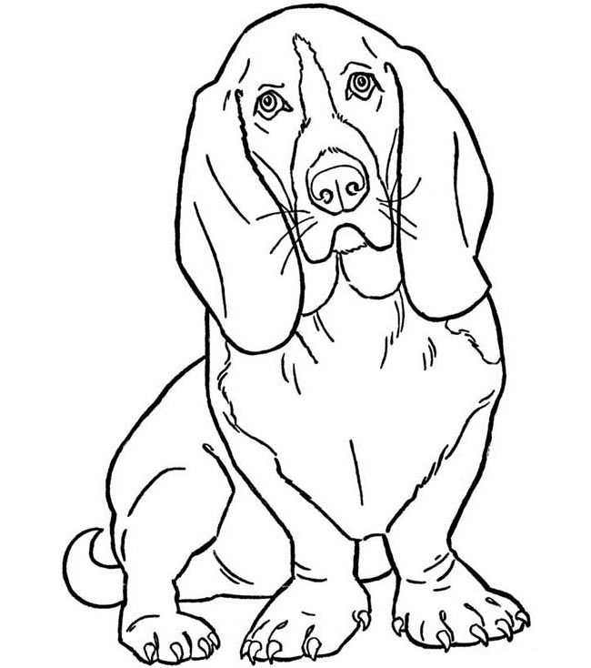 Dog Drawing Outline at GetDrawings | Free download