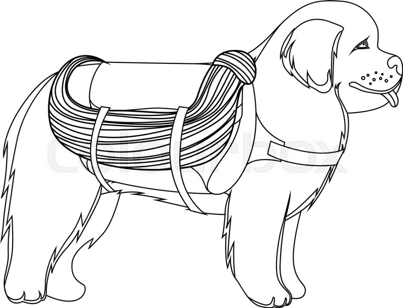 800x612 Newfoundland Dog Lifesaver Outline Vector Illustration Stock