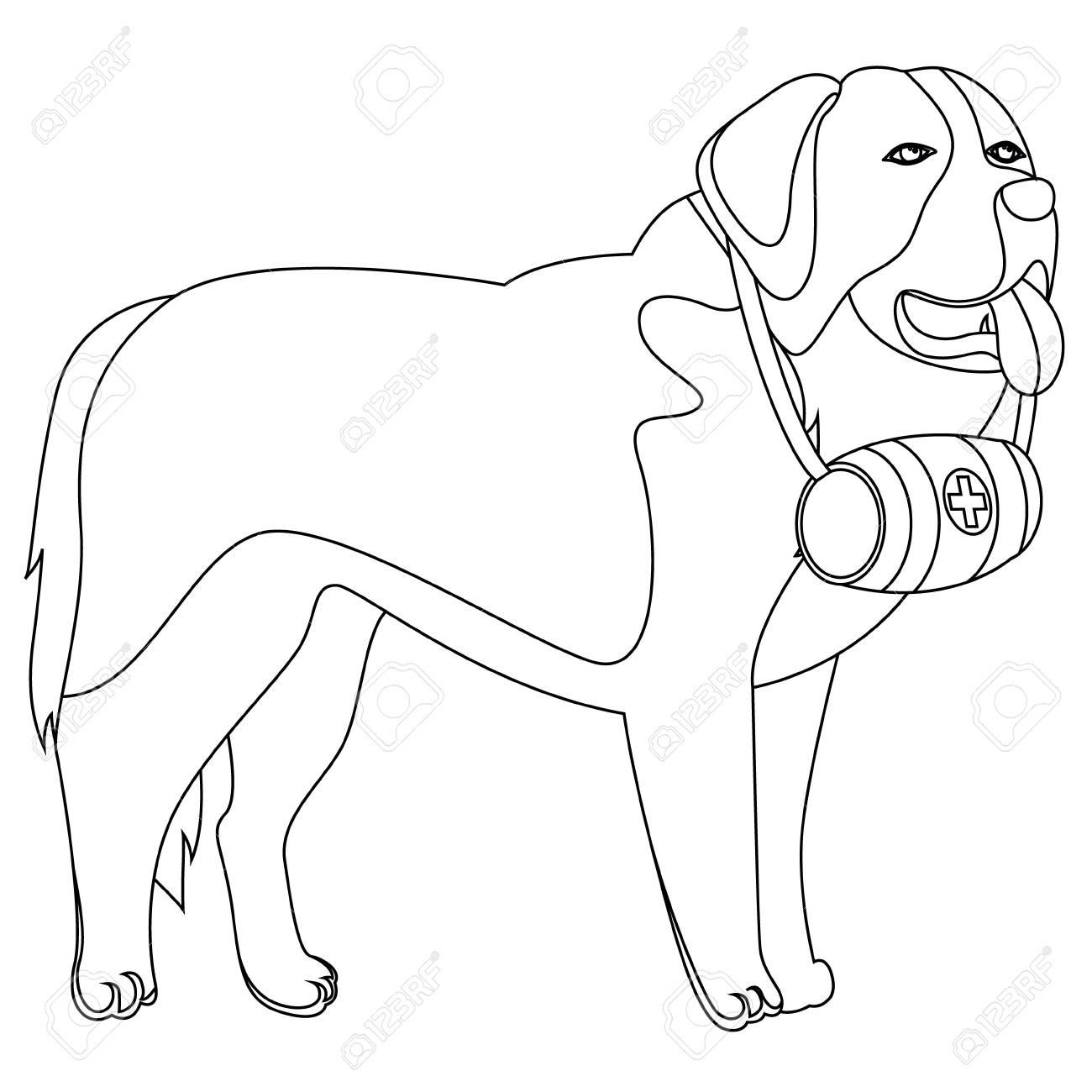 1300x1300 St Bernard Dog Lifesaver Outline Vector Illustration Royalty Free