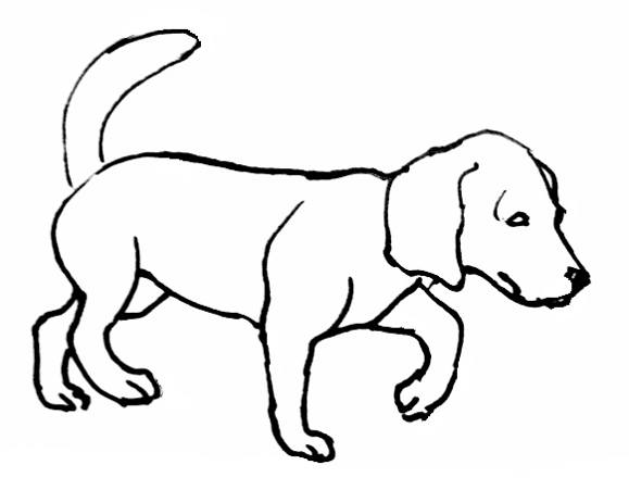 Dog Drawing Pages at GetDrawings.com | Free for personal use Dog ...