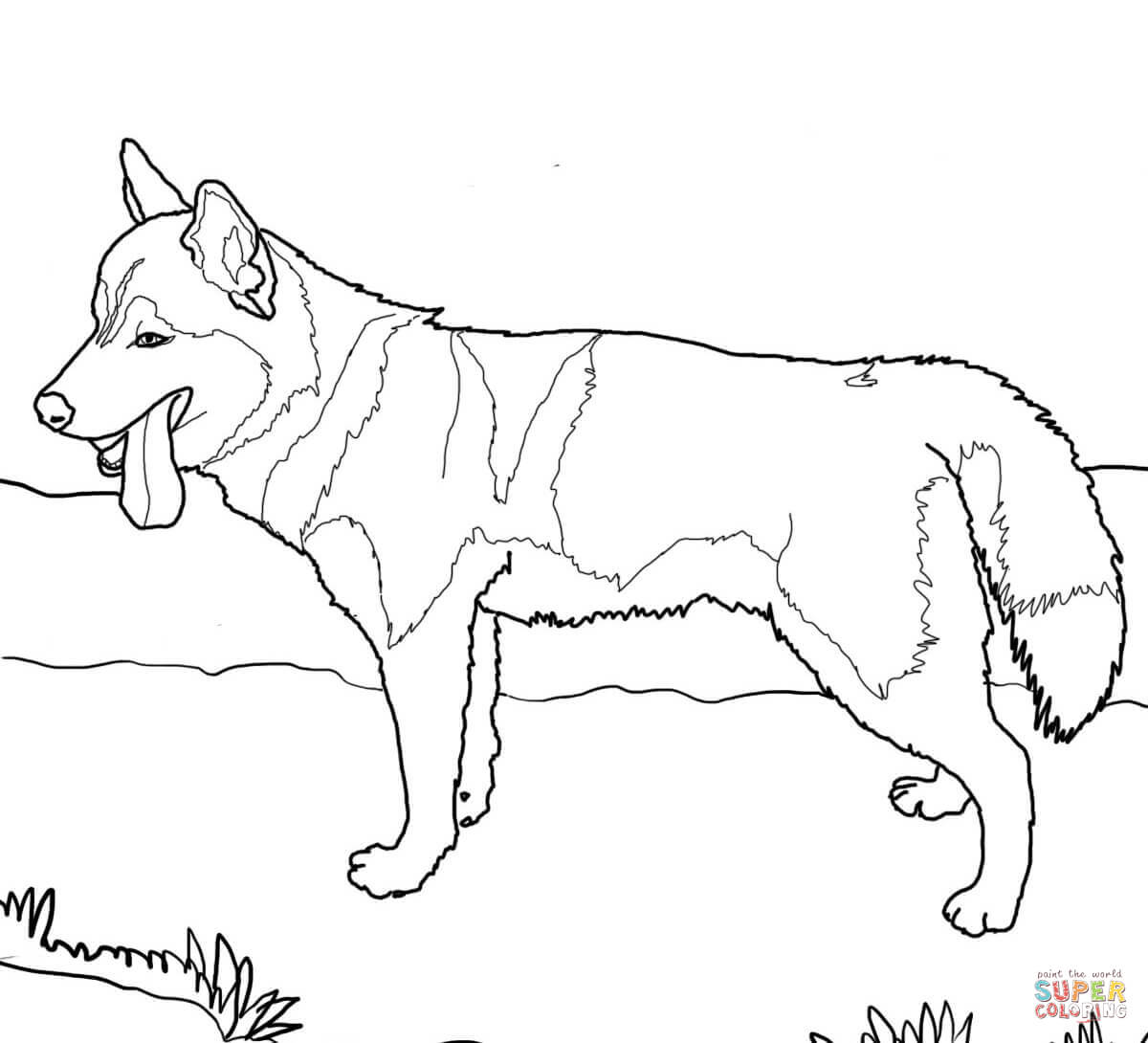 1200x1090 Siberian Husky Dog Coloring Page Free Printable Pages