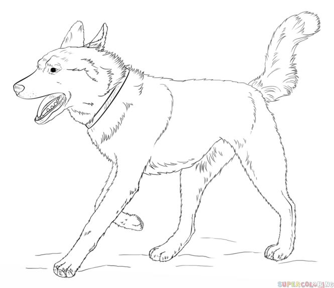 Dog Drawing Simple