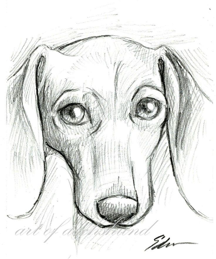 Dog Eye Drawing