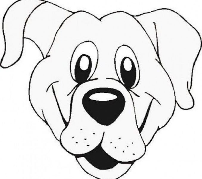 678x600 Dog Face Coloring Pages Coloring