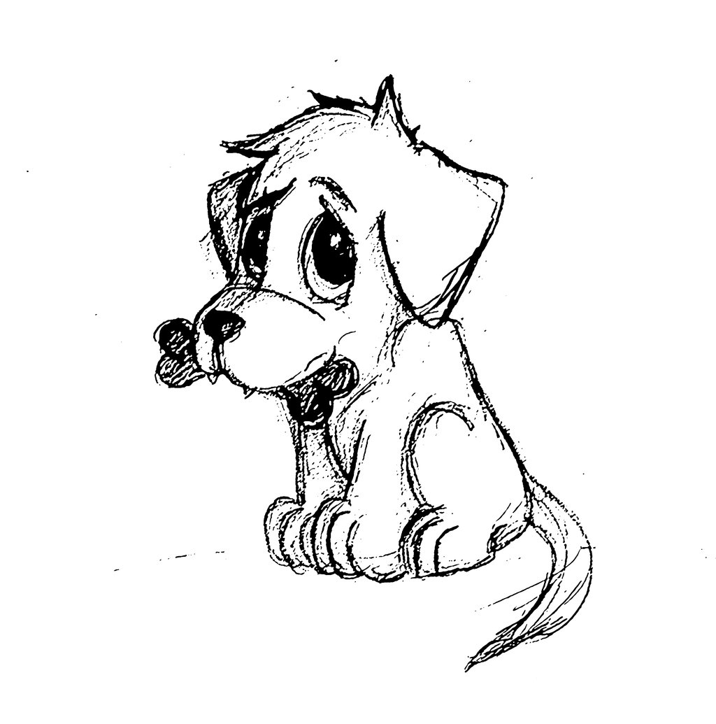 Dog Face Drawing Step By Step At Getdrawings Com Free For Personal