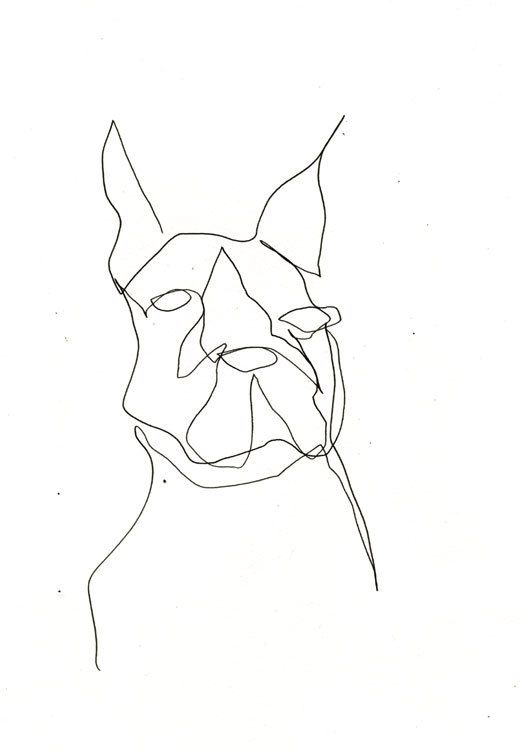 Contour Line Drawing Of A Dog : Dog face line drawing at getdrawings free for