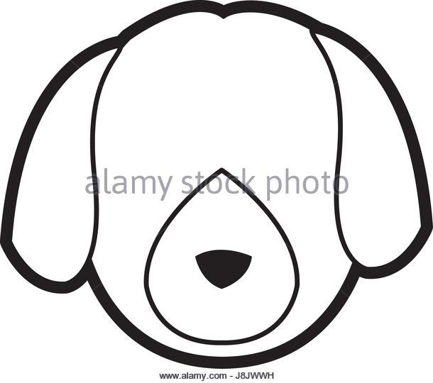 610x540 Flat Face Dog Stock Photos Amp Flat Face Dog Stock Images