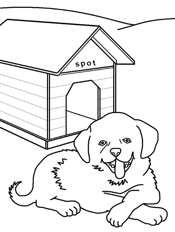 Dog For Drawing At GetDrawings