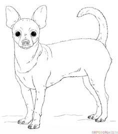 236x269 Drawn Chihuahua Draw