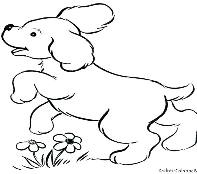 678x600 Puppy Dog Coloring Pages Dog Coloring Pages To Print In Addition