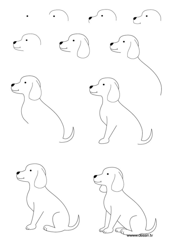 600x847 The Kids Will Love This How To Draw A Dog Step By Step