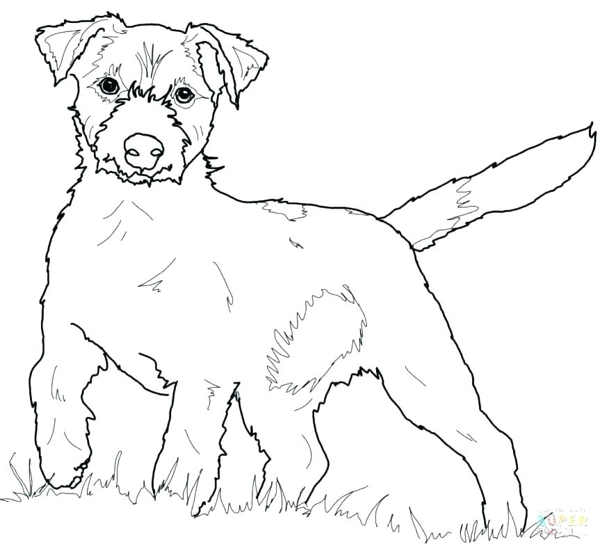 863x790 Dachshund Coloring Page Best Dachshund Coloring Pages Kids Dog