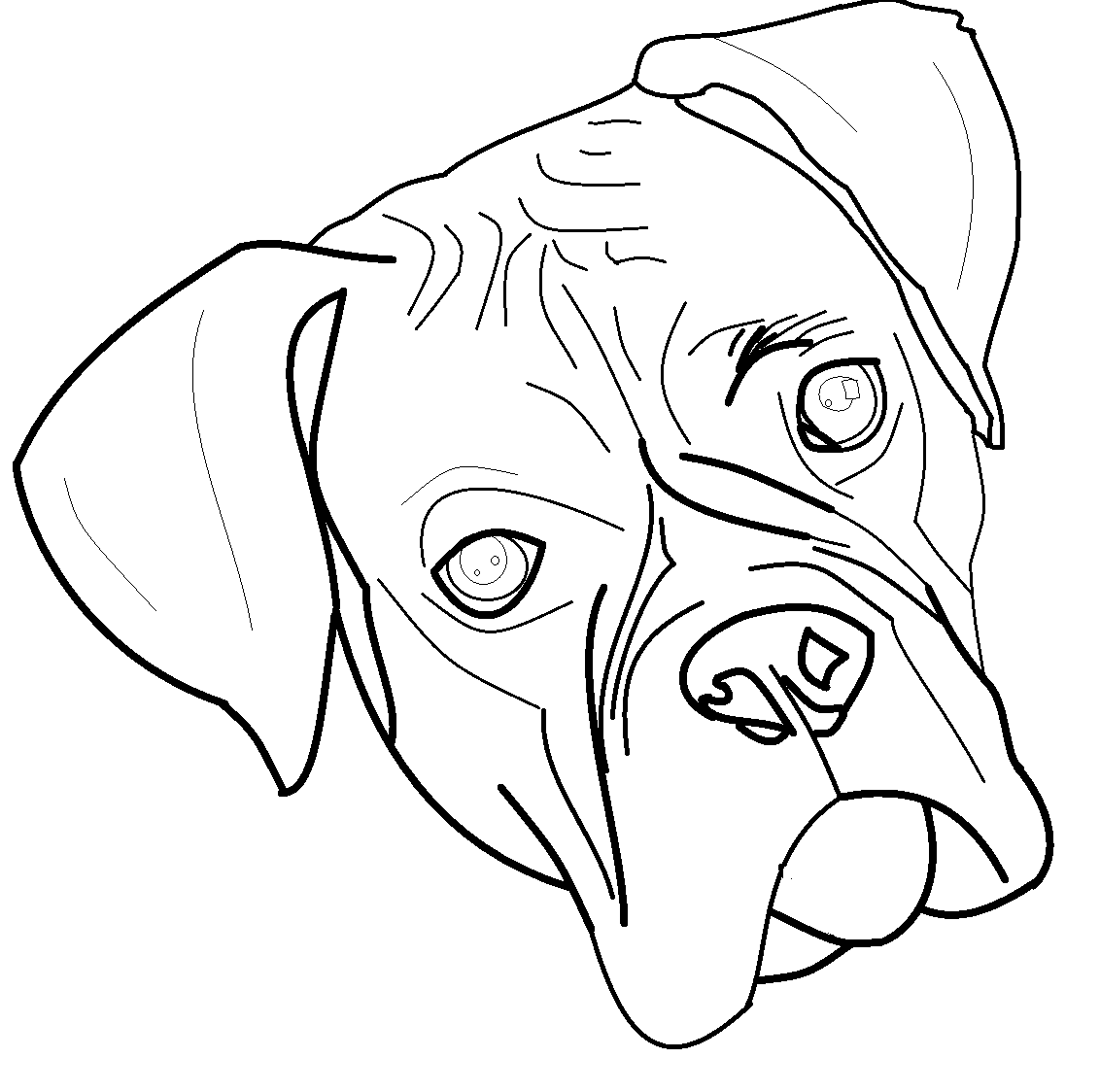 Line Drawing Of A Boxer Dog : Dog head drawing at getdrawings free for personal
