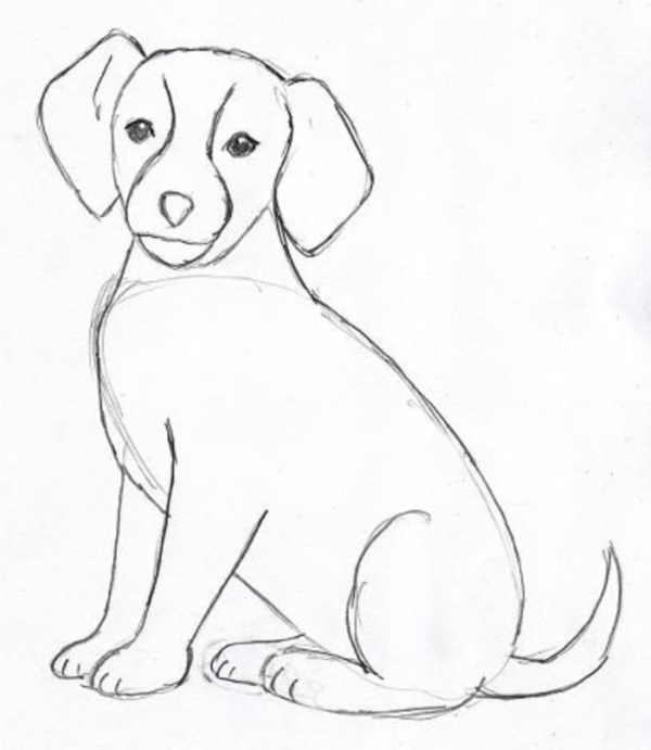 Dog Images Drawing