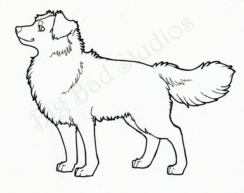 800x633 Dog Sketch By Big Bad Studios