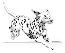 216x175 All Breed Agility Obedience Art