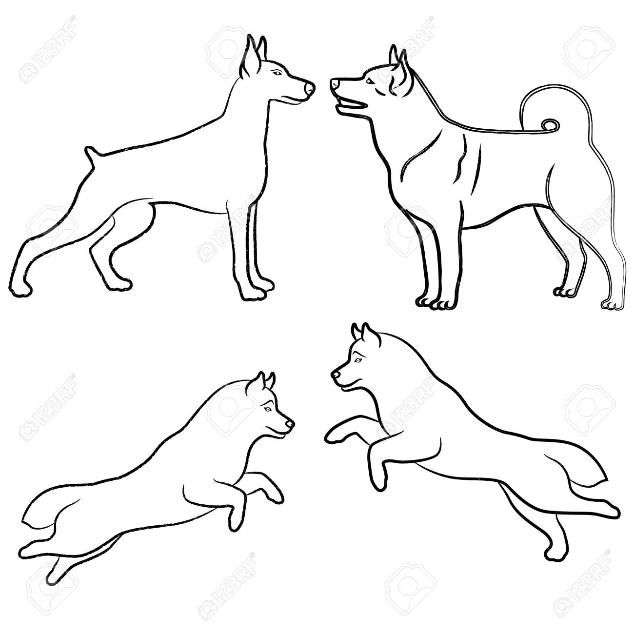 1300x1300 Set Of Four Standing And Jumping Dogs, Vector Outlines Royalty