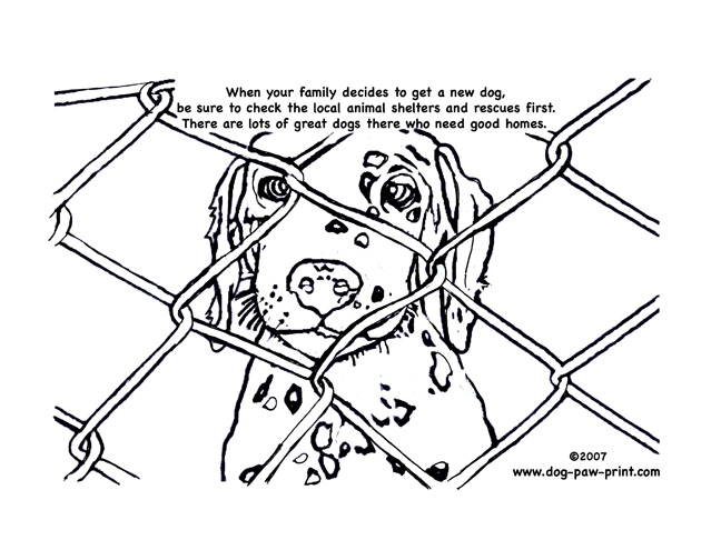 648x504 Paw Print Coloring Page Free Download