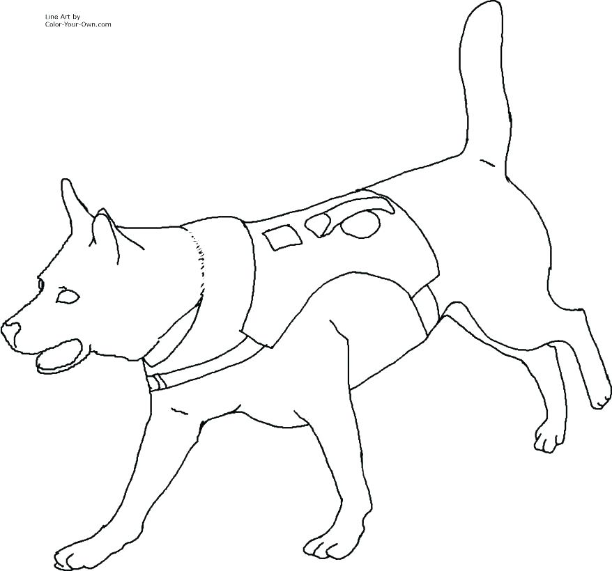Dog Paws Drawing at GetDrawings com | Free for personal use