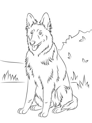 358x480 German Shepherd Sitting Coloring Page Free Printable Pages