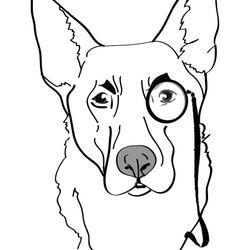 250x250 Watchdog Canine Boarding Amp Pet Sitting