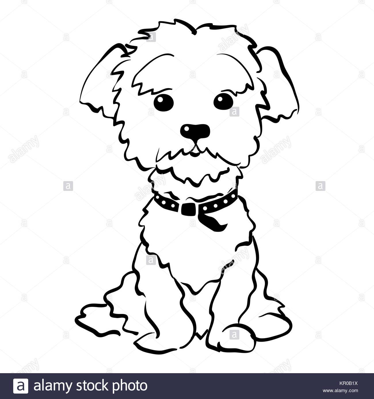 1300x1390 Cartoon Sitting Dog Collar Pet Stock Photos Amp