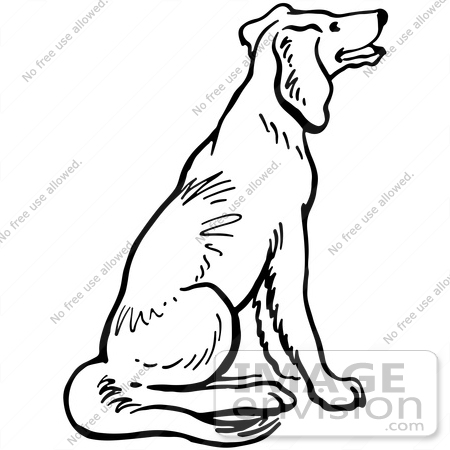 dog sitting drawing at getdrawings com free for personal use dog rh getdrawings com black and white hot dog clipart black and white dog clip art free