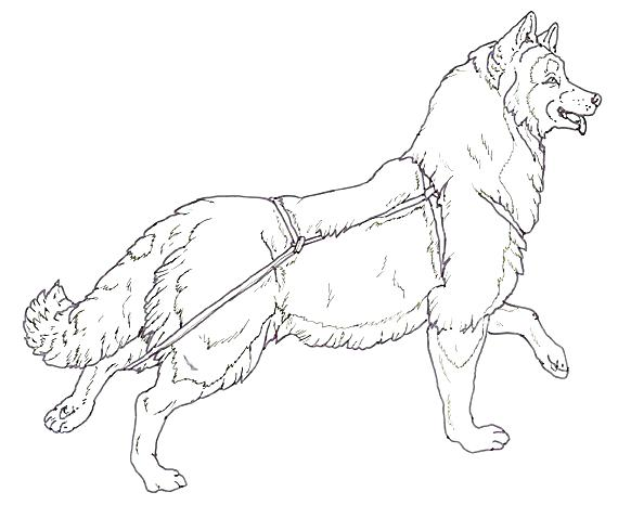 Dog Sled Drawing At Getdrawings Com Free For Personal Use Dog Sled