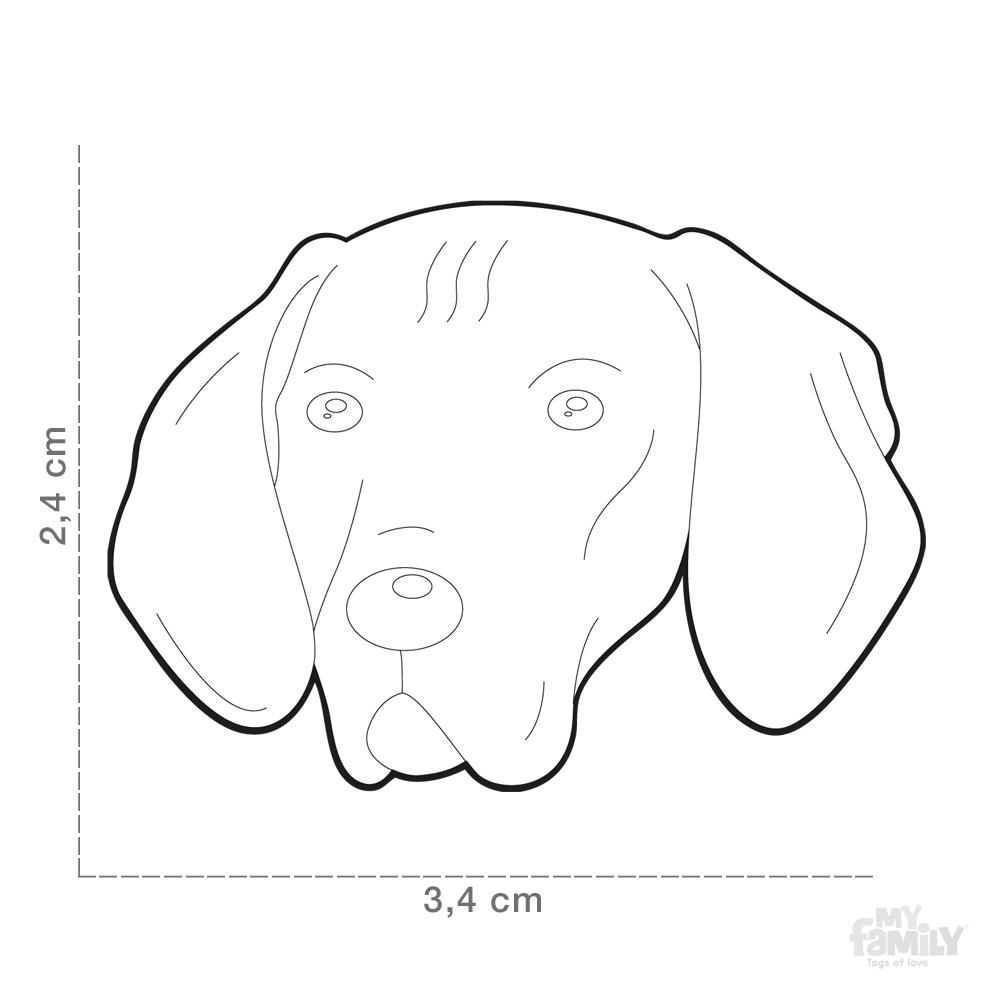 1000x1000 Vizsla Dog Id Tags Myfamily