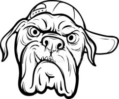242x200 Whiteboard Drawing Angry Dog Face Stock Vectors