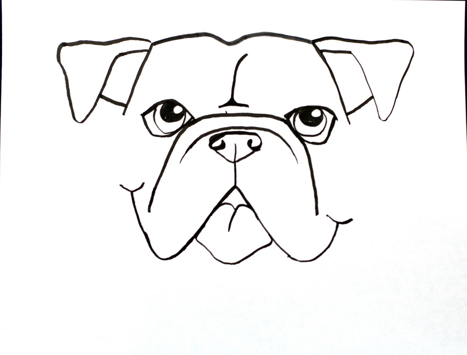 1600x1215 Drawn Bulldog Really
