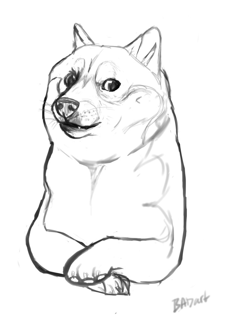 Doge Drawing