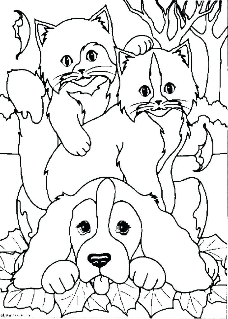 733x1024 Dog And Cat Coloring Page