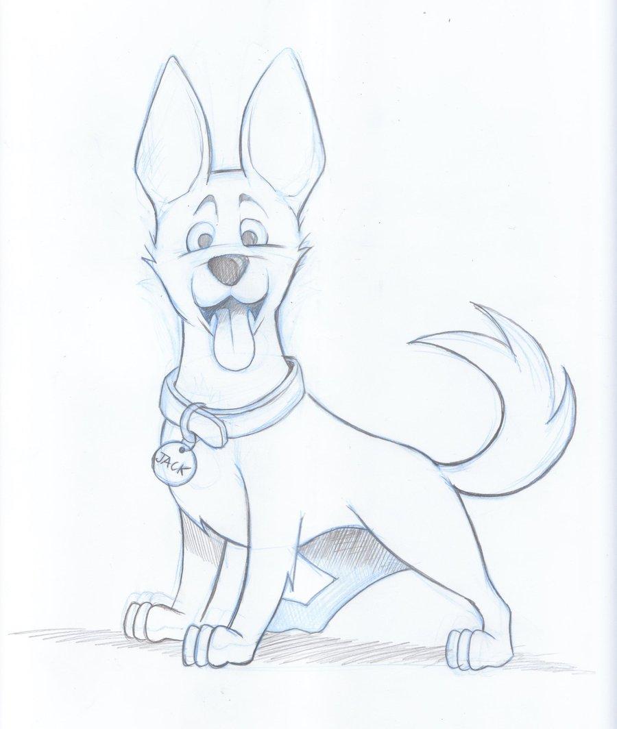 900x1064 Kelpie Dog Sketch By Timmcfarlin