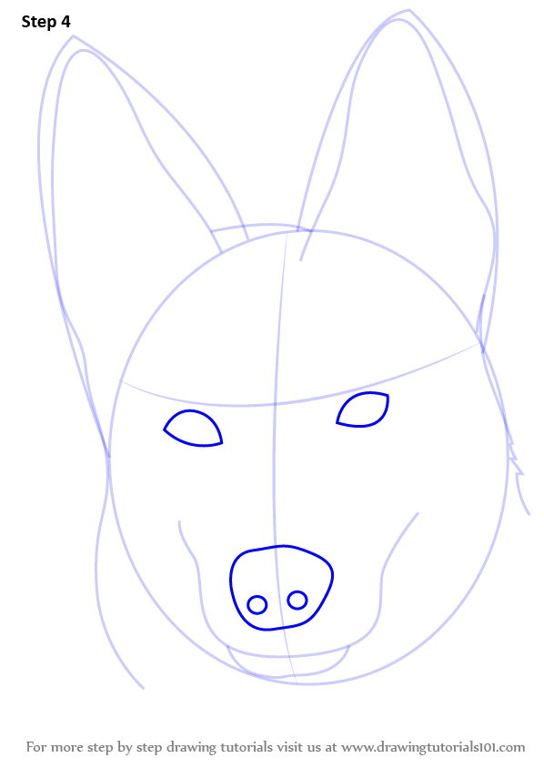 598x844 Learn How To Draw German Shepherd Dog Face (Farm Animals) Step By