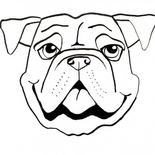 320x320 Tag For How To Draw Puppy Face Drawing Dog Cartoon Drawings How