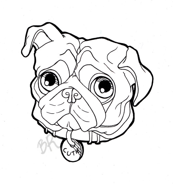 Pug Face Line Drawing : Dogs faces drawing at getdrawings free for personal